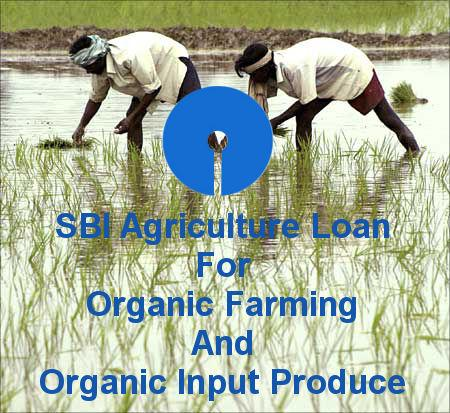 SBI Agriculture Loan For Organic Farming And Organic Input Produce