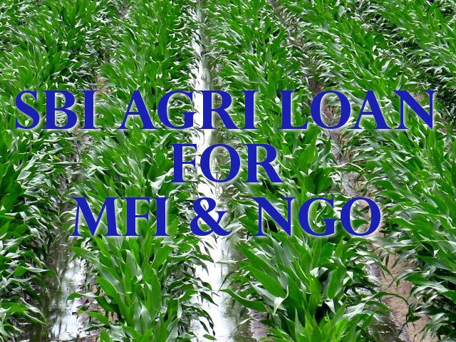 SBI Agriculture Loan For Micro Finance Institutions (MFI) or Non Govt. Organisations (NGO)